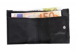 Mini Geldbörse mit Schlüsselring - Nappa Leder sortiert