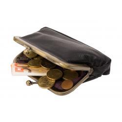 Bügelbörse / Knipsbörse groß mit Innen Reißverschlussfach - farblich sortiert Rind Leder